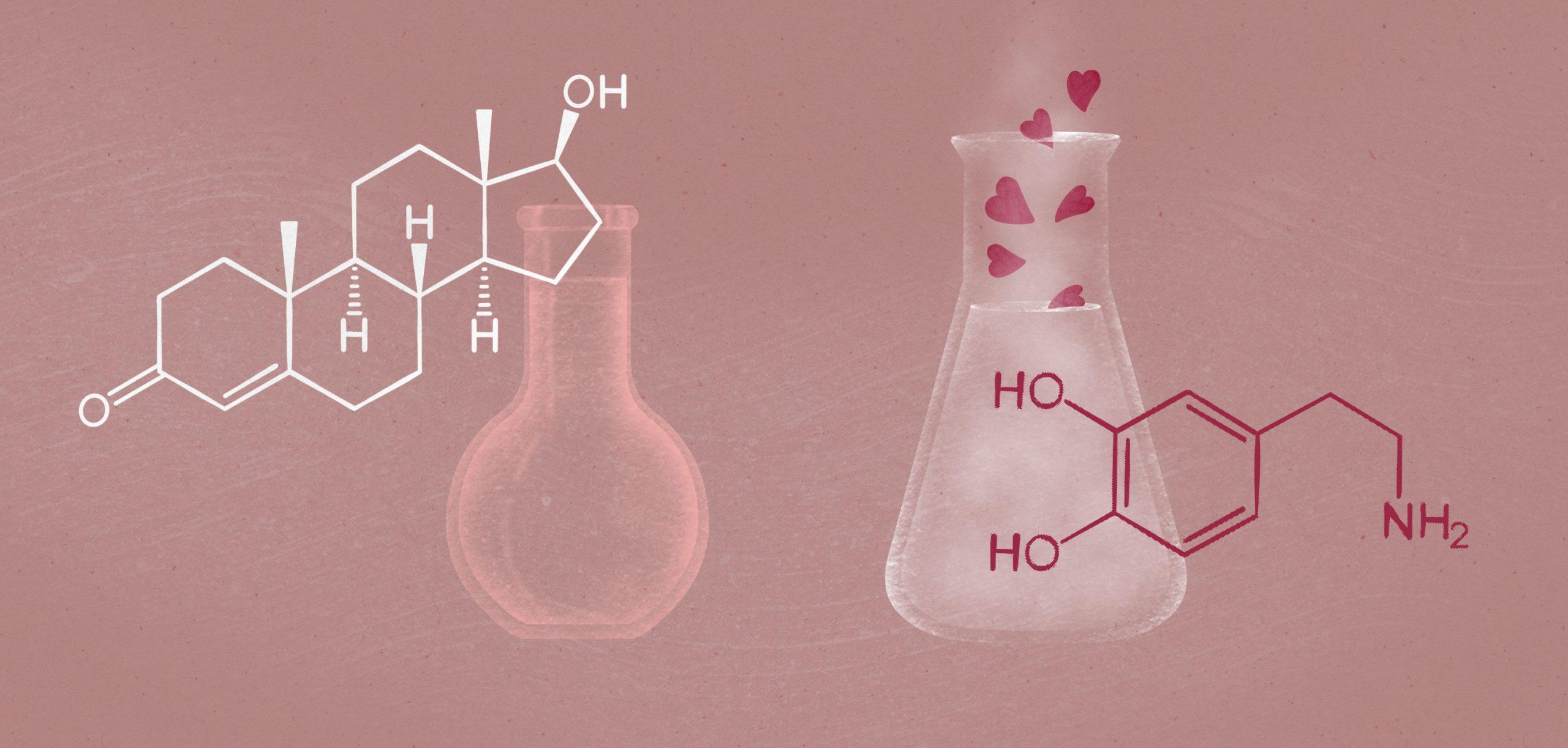 Prawdziwa miłość? To czysta chemia!